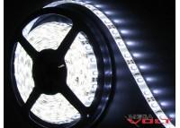 Светодиодная лента SMD 2835 (60 LED/m) IP65 standart 12V