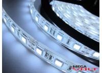 Светодиодная лента SMD 5050 (60 LED/m) IP67 premium 12V (ESTAR)