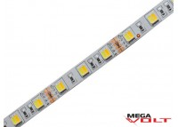 Светодиодная лента SMD 5050 (60 LED/m) IP20 standart 12V (Multi white)