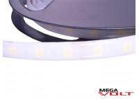 Светодиодная лента SMD 5050 (60 LED/m) IP65 standart 12V matted