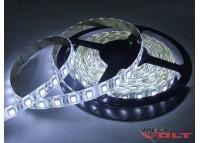 Светодиодная лента SMD 5050 (60 LED/m) IP65 standart 12V