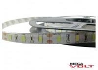 Светодиодная лента SMD 5630 (60 LED/m) IP65 standart 12V